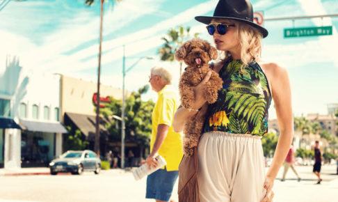 犬を抱っこしている女性