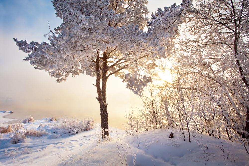 大雪が降る夢